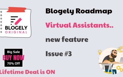 Blogely Roadmap #3 – discussion about VA seats